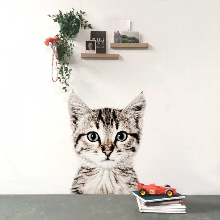 Magnetic wallpaper Cat by Groovy Magnets