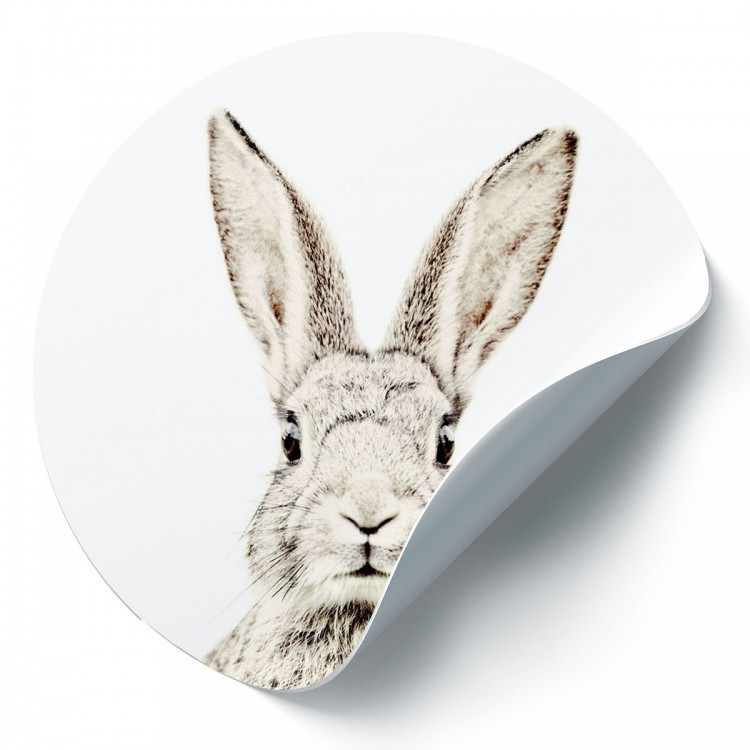 Magnetic wall sticker rabbit by Groovy Magnets - round adhesive wall sticker with animal print